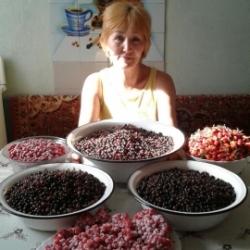 Николаева  Клавдия Николаевна