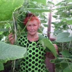 Лыхина Тамара Пантелеймоновна